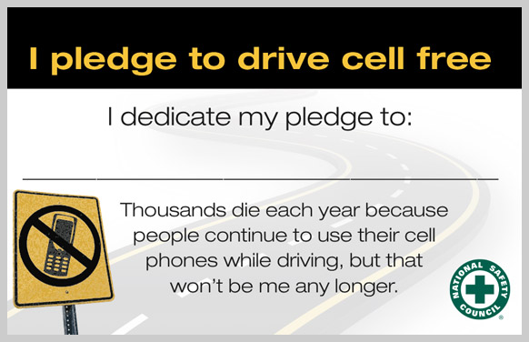 drive-cell-free-challenge